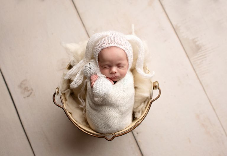 ft. collins newborn photographer