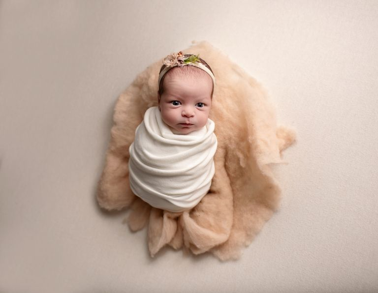 loveland newborn photoshoot